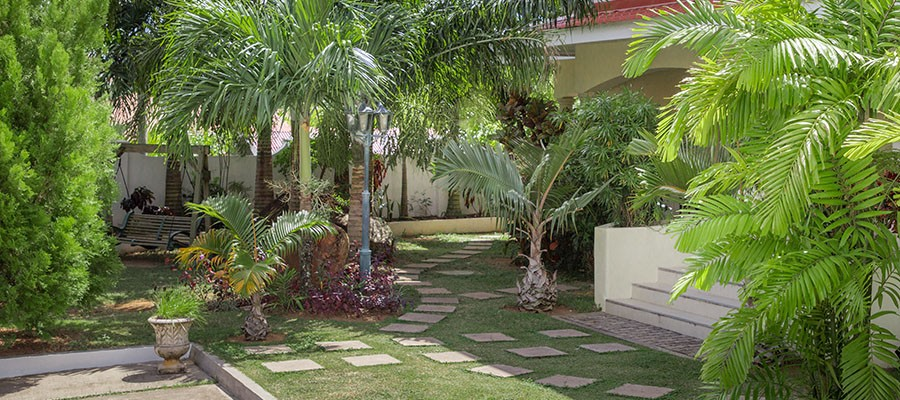 MLS_Accommodation_in_Seychelles_facilities_gardens_ (1)