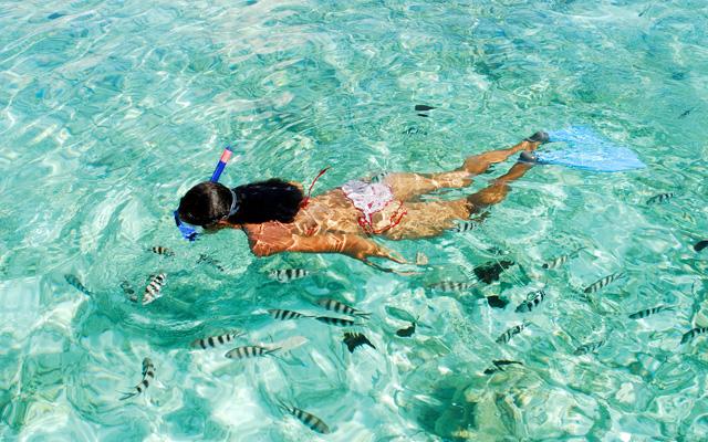 ttd_diving_snorkeling_02