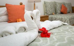 MLS_bed-breakfast-accommodation-seychelles_family-room-bnb_slider_(1)